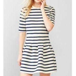 Gap Cream Navy Blue Striped Scuba Fit Flare Dress